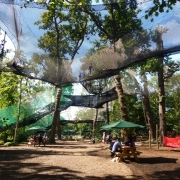 nets kingdom go ape