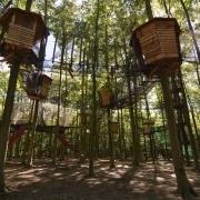 tree house track monde sauvage