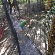 safari park monde sauvage