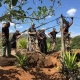 team casela park active constructions