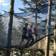 skogsprett norway