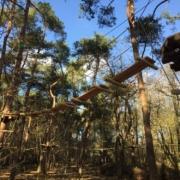 libema treetop adventure klimrijk